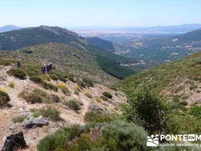 Pinar de Canencia y Mina de Plata del Indiano;madrid excursiones de un día;jerte cerezos en flor